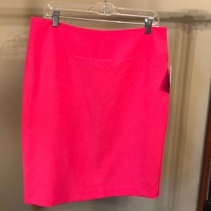 NWT, knee-length lined skirt for work or casual.